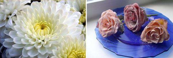Как засахарить цветы