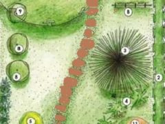 Планировка загородного участка 6 соток с небольшим огородом (план схема)