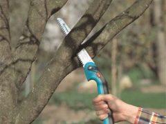 Садовый инструмент для обрезки