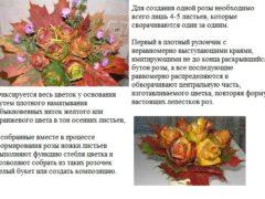 Поделки на школьный Осенний бал своими руками (с фото)
