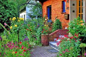 Ландшафтный дизайн: фото цветников