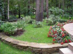 Ландшафтный дизайн лесного участка с фото