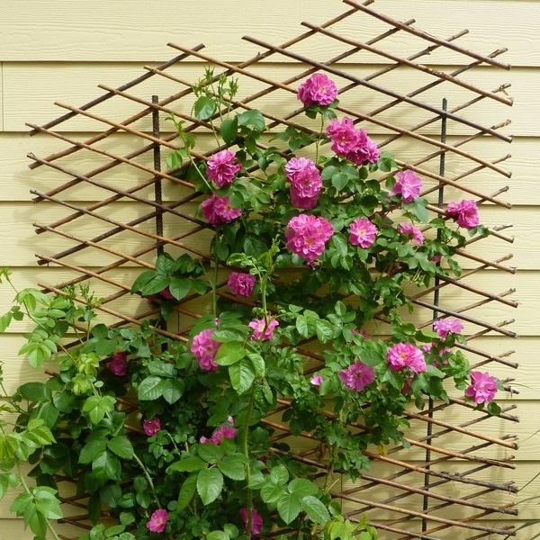 цветы на балконе как закрепить