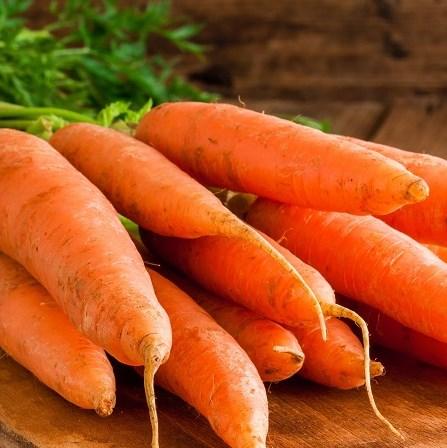 оранжевая морковь, которая хранится всю зиму